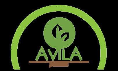 Avila_2020_EDITADO.png