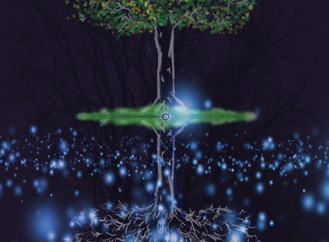 How deep seeds grow