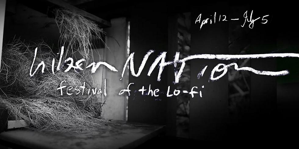 hiberNATION festival