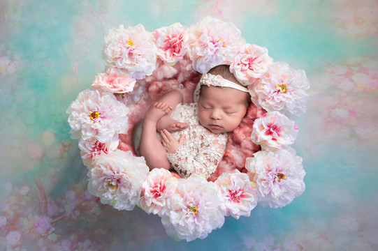 bébé fleur finistère