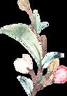 SakuraBlossoms_011.png