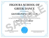 Participation Certificate (Blue) Sample.