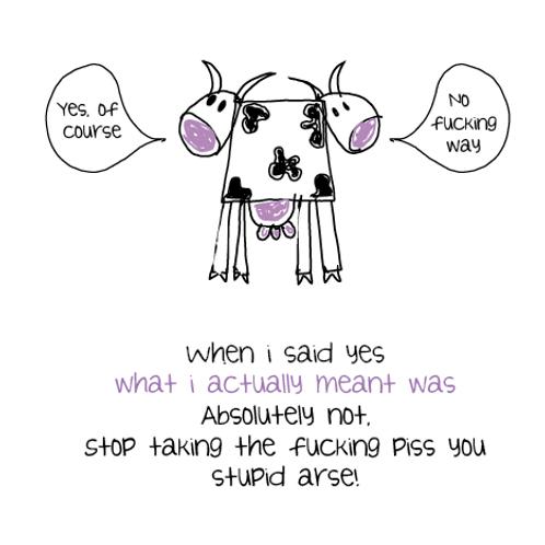 2 faced cow