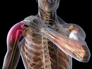 Shoulder Stability/Mobility/Strength