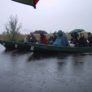 Fluiterbootjes Friesland.jpg