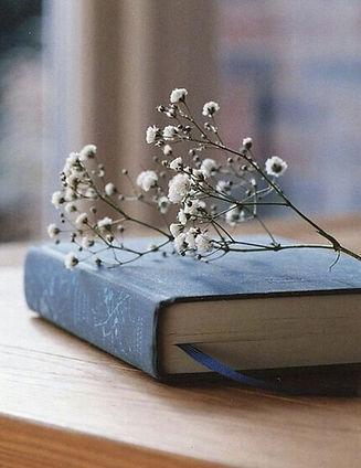 book met gipskruid.jpg