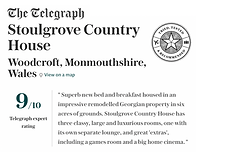 Telegraph Review.png