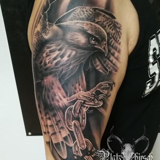 falcon tattoo black and grey.jpg