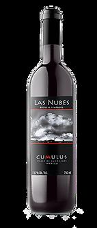 Las Nubes. Cumulus 2015