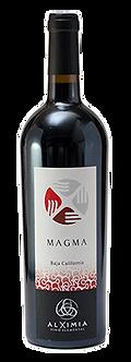 Alximia. Magma 2016