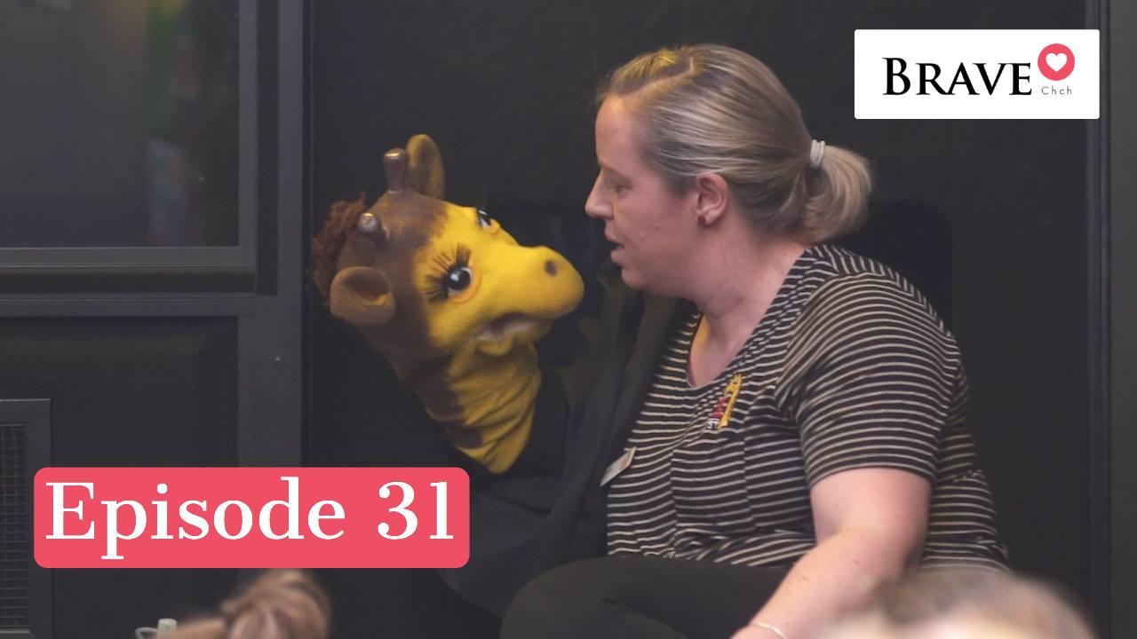 Episode 31 - Life Education