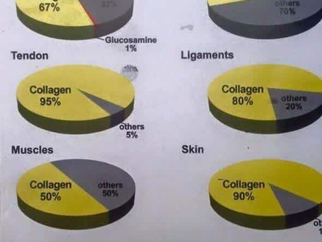 Updated on Why Visi's Hydrolyzed Collagen Protein is Superior