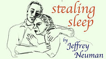 stealing sleep title and author.jpg