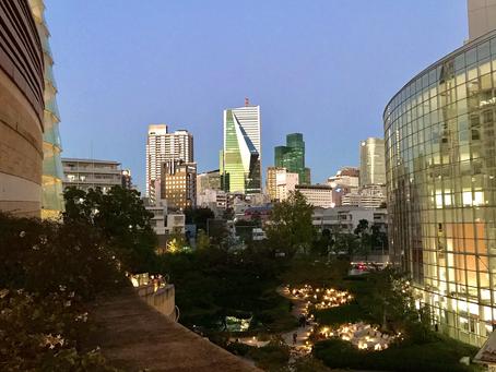 東京は秋晴れの夜空