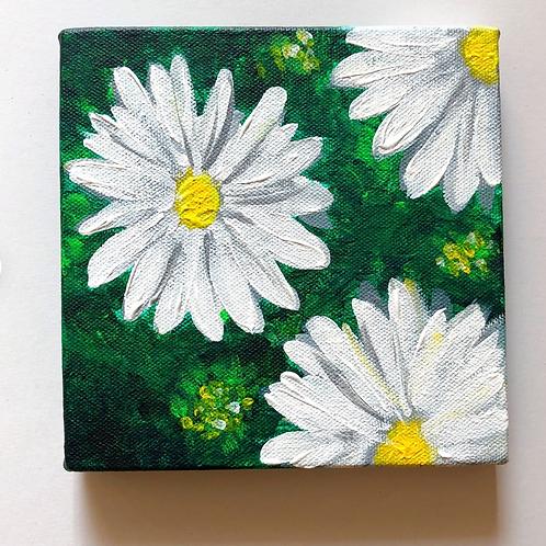 """Daisies - 6""""x6""""Acrylic on Canvas"""