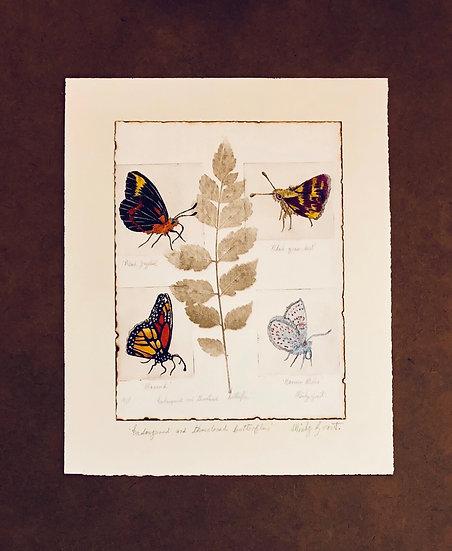 Endangered and threatened butterflies