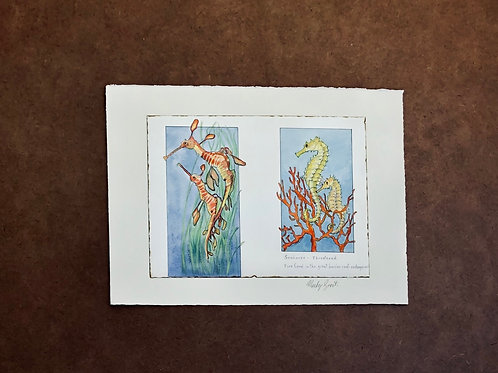 Sea horses and fire coral