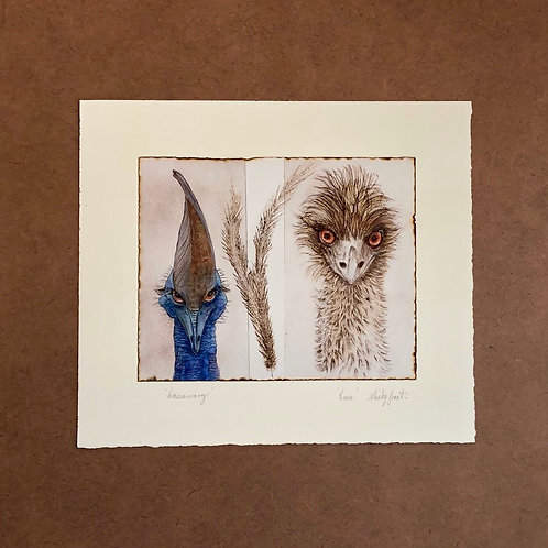 Cassowary and Emu