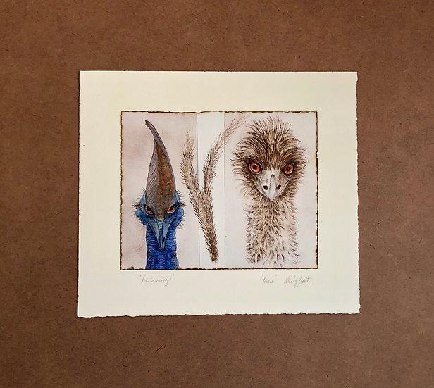 Cassowary and Emu