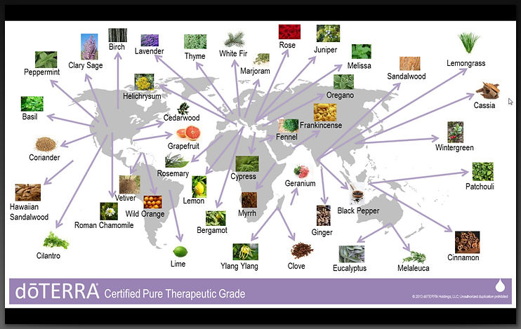 map of where the plants are sourced