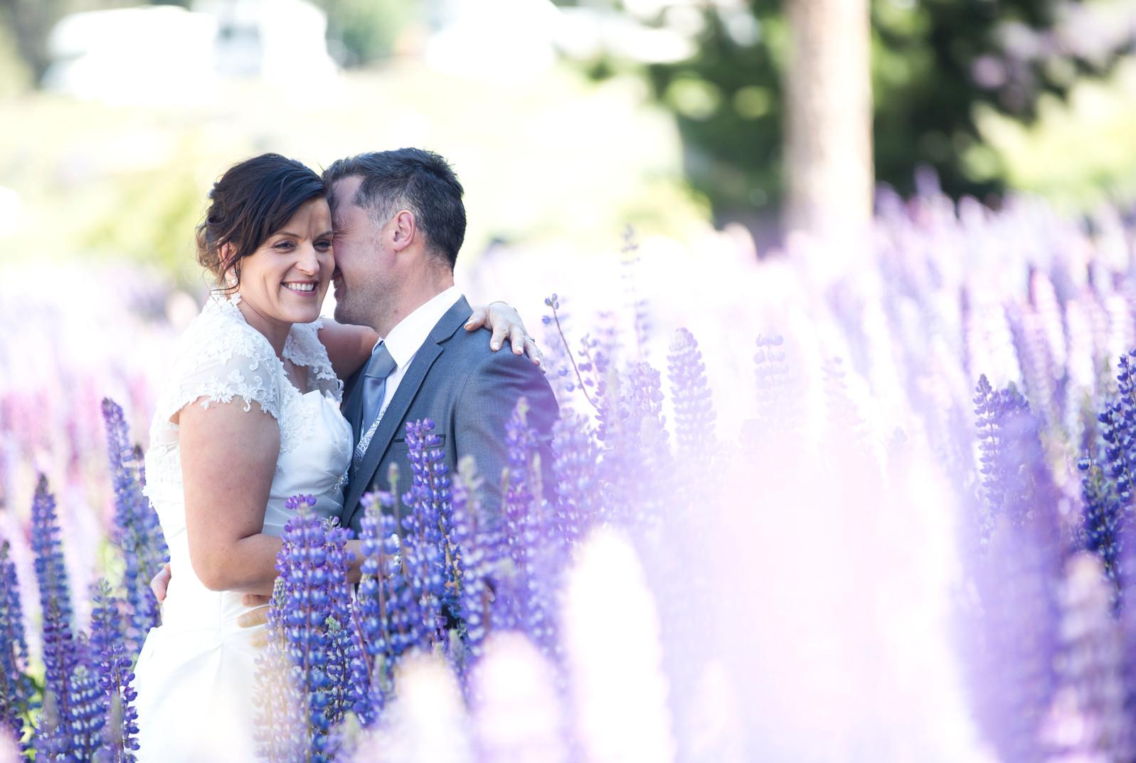 Lake Tekapo lupins wedding