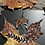 "Thumbnail: ""The Gather"" Fall Leaf Cut into Art"