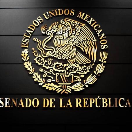 EN EL SENADO, PROPONEN QUE ELECCIONES SINDICALES LAS REGULE UNA INSTANCIA COLEGIADA IMPARCIAL