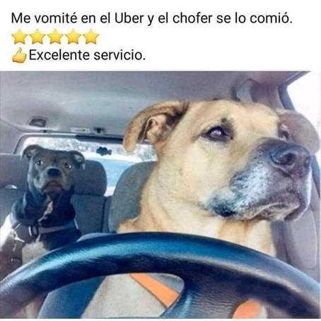 EXCELENTE SERVICIO ¡LIKE!
