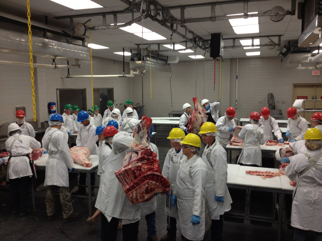 Youth 706 cutting #beef during the #