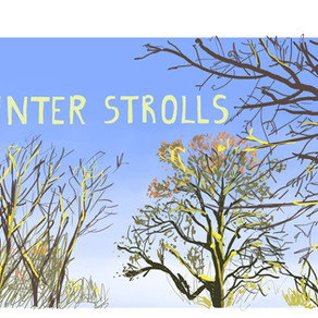 Winter strolls