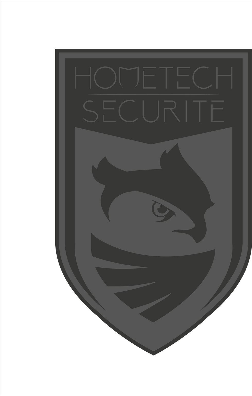 Hometech securite Logo 01-04.png
