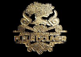 FO Logo 01_Plan de travail 1.png