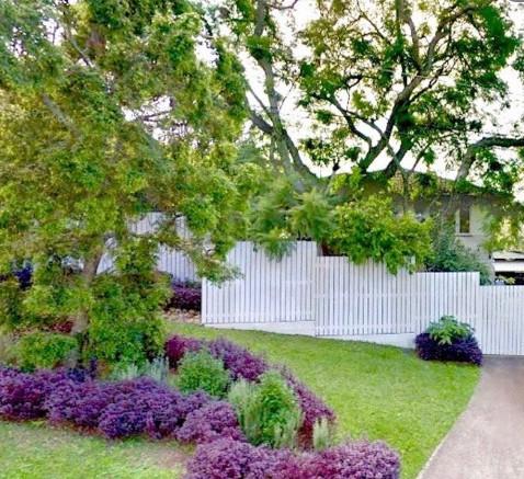 Guest Entrance (right) beneath Jacaranda tree