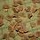 Thumbnail: Brugmansia Sugartime Seeds (5pcs)
