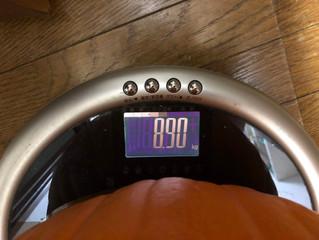 パンプキン重さあてクイズ