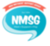 NMSG Logo_Blue _ Red_No Background.png