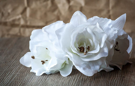 flower_flowers_nature_fabric_white_wood_