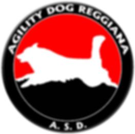 Agility dog reggiana