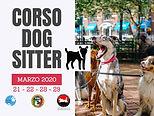 Corso Dog Sitter