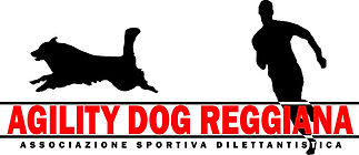 reggio emilia agility dog, reggio emilia educazione cani