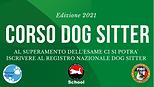 Corso Dog Sitter professionale