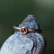 dorothee diamantrose rot.jpg