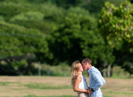 Kualoa Beach Park Surprise Proposal