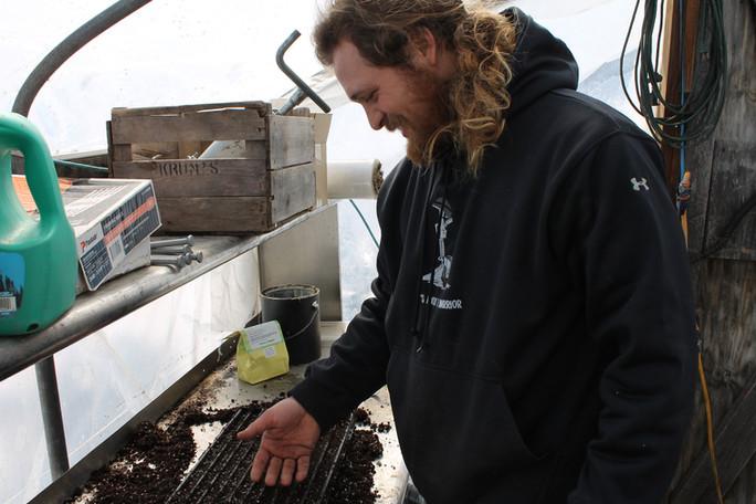 Ask Farmer Tim - Seeds