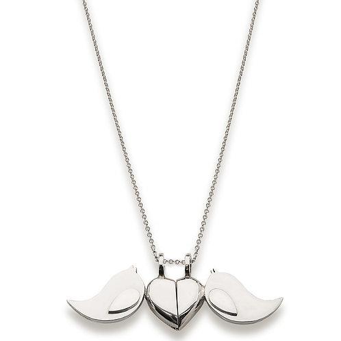 Pájaros y Corazón