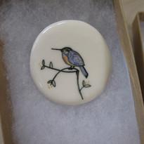 Sitting Kingfisher