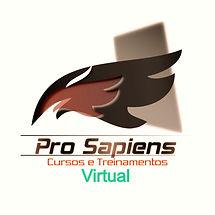pscursos1trans_edited.jpg