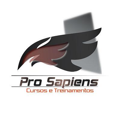 pscursos1trans.jpg