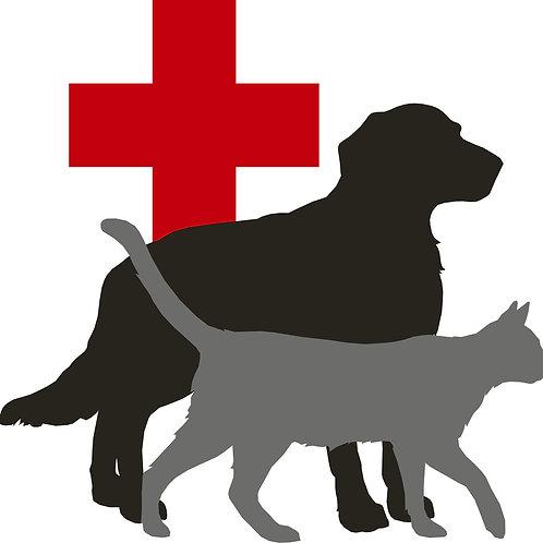 Animal Hospital Of Eastern Utah