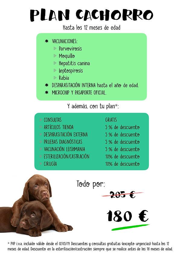 Plan CACHORRO 2019.jpg